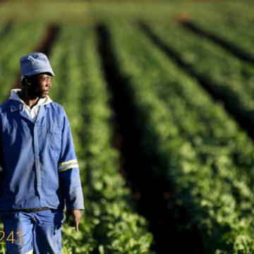 Gabon: L'Office National de l'Emploi (ONE) lance le Fonds ''ONE-Entreprendre pour soutenir l'entreprenariat