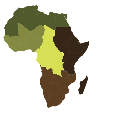 Réunion Extraordinaire du CGLU Afrique à Libreville portée par Léandre Nzue