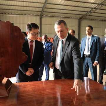 Kevazingo : Le Gabon rentre dans la 3ème phase de la transformation du secteur bois