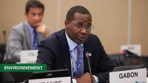 LE GABON ET D'AUTRES PAYS AFRICAINS AFFICHENT LEUR ENGAGEMENT À LUTTER CONTRE LE CHANGEMENT CLIMATIQUE