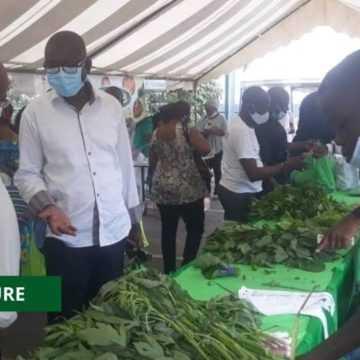 AGRICULTURE : LES « FAMILLES VERTES » EXPOSENT LEURS FRUITS ET LÉGUMES