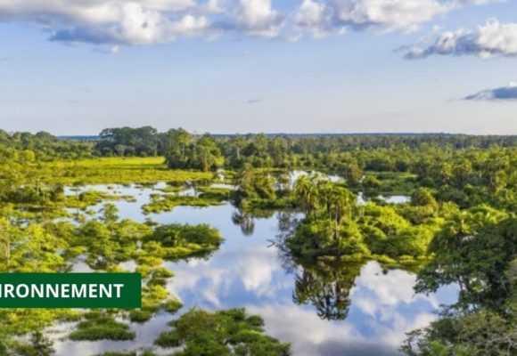 LE CONSEIL NATIONAL CLIMAT ANNONCE LE LANCEMENT DE L'INITIATIVE CAFI À OYEM
