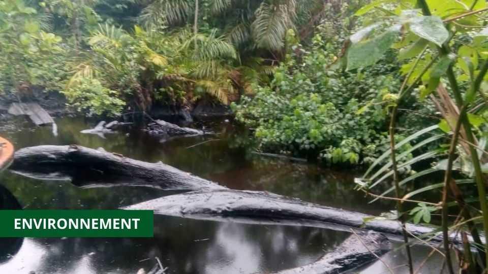 POLLUTION : LANCEMENT D'UN AUDIT OPÉRATIONNEL DES INSTALLATIONS DE PERENCO