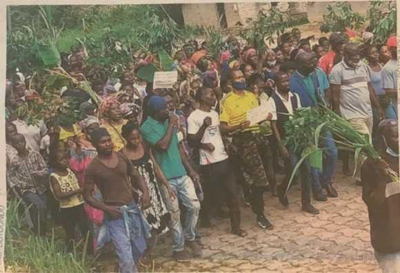 SOCIETE : À MEKAMBO LES POPULATIONS MARCHENT CONTRE LES AUTORITÉS ET LES ELEPHANTS