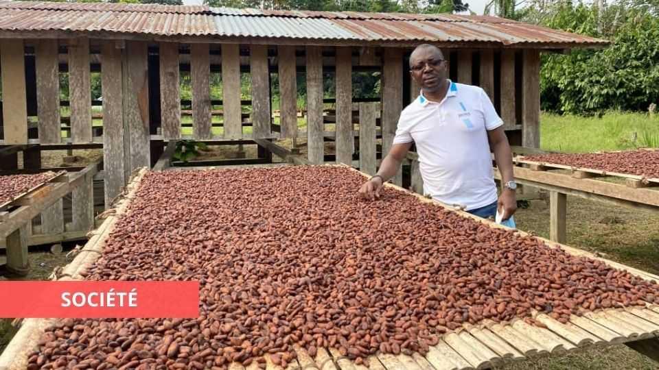 CAISTAB : THIERRY MBOUTSOU POURSUIT LA RELANCE DES ACTIVITÉS CAFÉ-CACAO DANS LA NGOUNIÉ, LE MOYEN-OGOOUÉ ET LA NYANGA