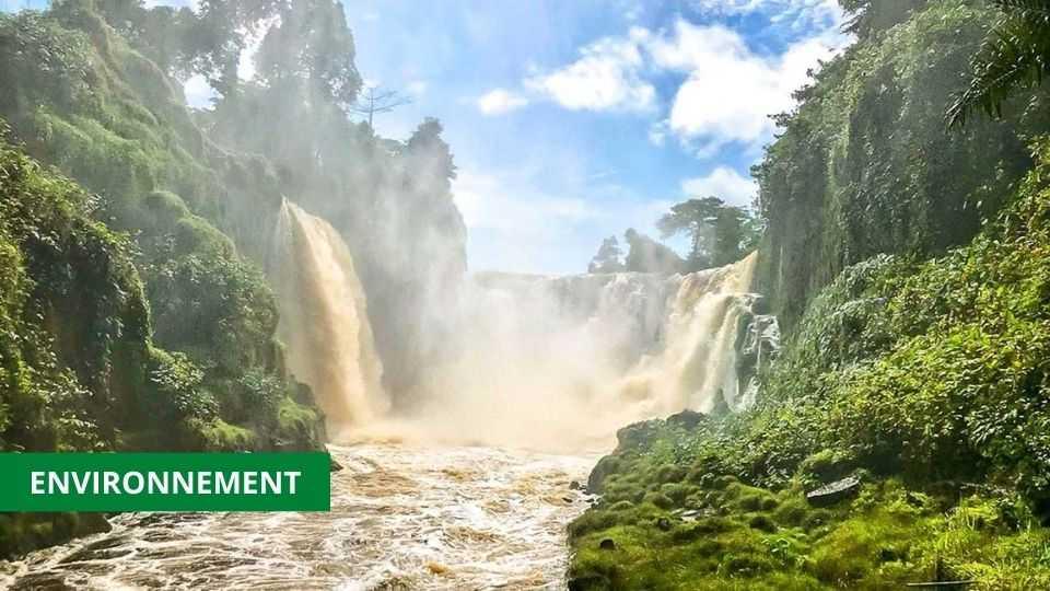 ENVIRONNEMENT : LE PARC NATIONAL DE L'IVINDO INSCRIT AU PATRIMOINE MONDIAL NATURE DE L'UNESCO