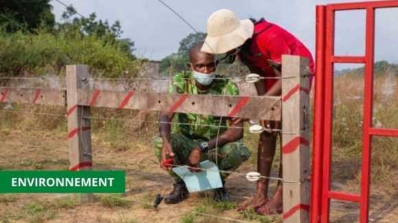 CONFLIT HOMME-FAUNE : INAUGURATION DE LA BARRIERE ELECTRIQUE DE MOURINDI